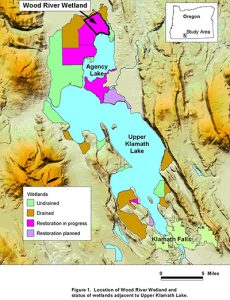 Wetlands map, Oregon's Klamath Lake. (Map: USGS)