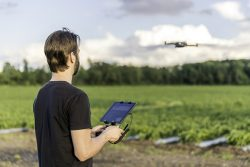 A Canadian drone pilot flies a UAV over a field. (Photo: Onfokus/iStock/Getty Images Plus/Getty Images)